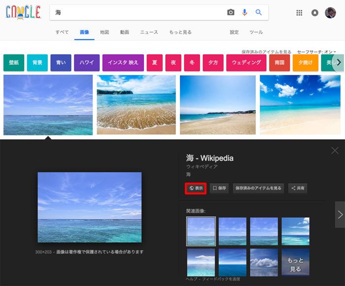 Google画像検索で「海」を検索